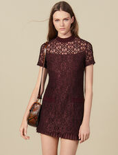 Robe courte en dentelle : Robes couleur Prune